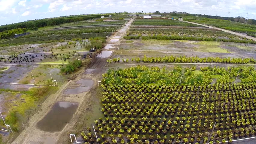 Aerial Video Of Farm Land In Homestead Florida Stock ...