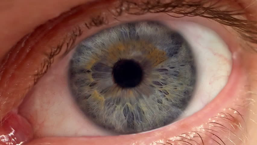 Eyeball Retinal scanner with high tech overlay and interlace lines.