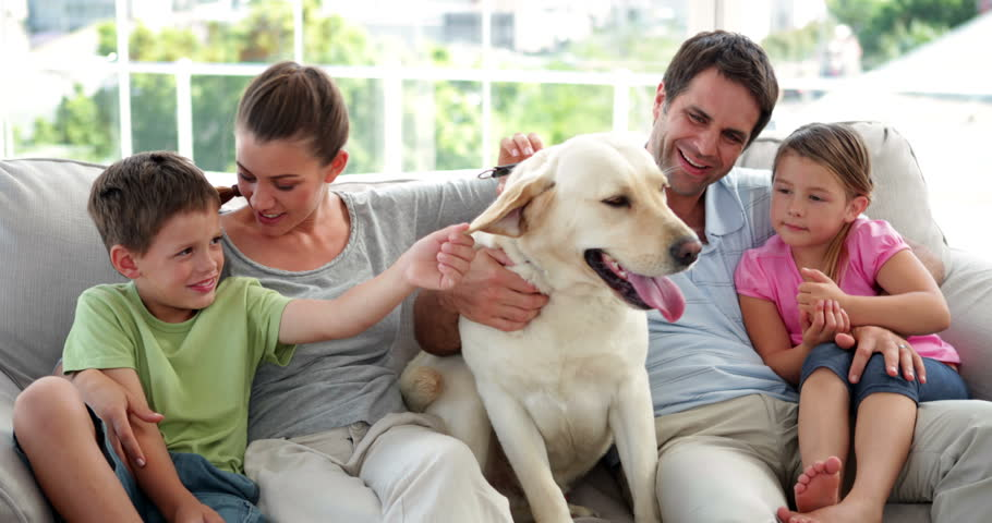 Cute family relaxing together on the couch with their labrador dog in living room at home
