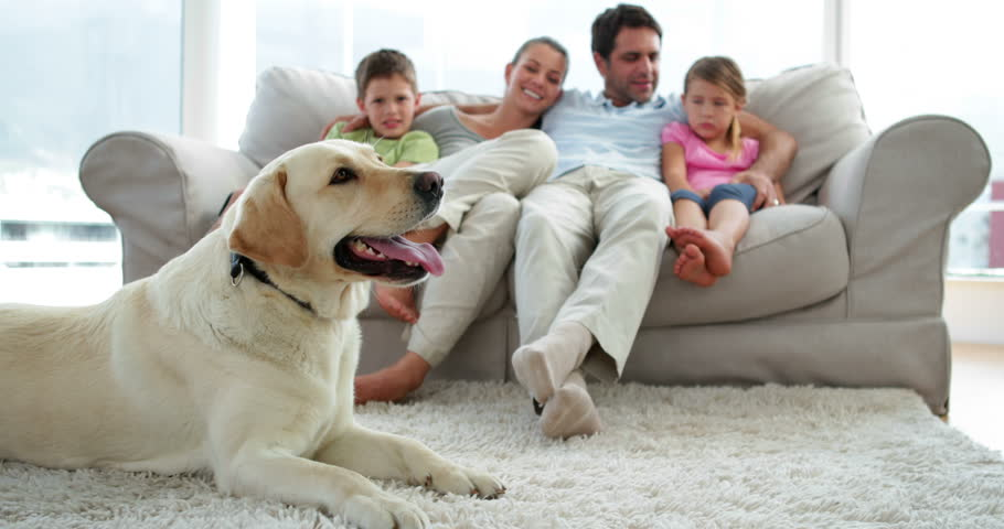 Cute family relaxing together on the couch with their dog on the rug in living room at home