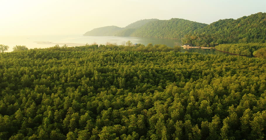 Aerial View: Flying over the tropical coast. Fisherman house. Krabi, Thailand. February 2014. Krabi is a town on the west coast of southern Thailand at the mouth of the Krabi River - HD stock footage clip