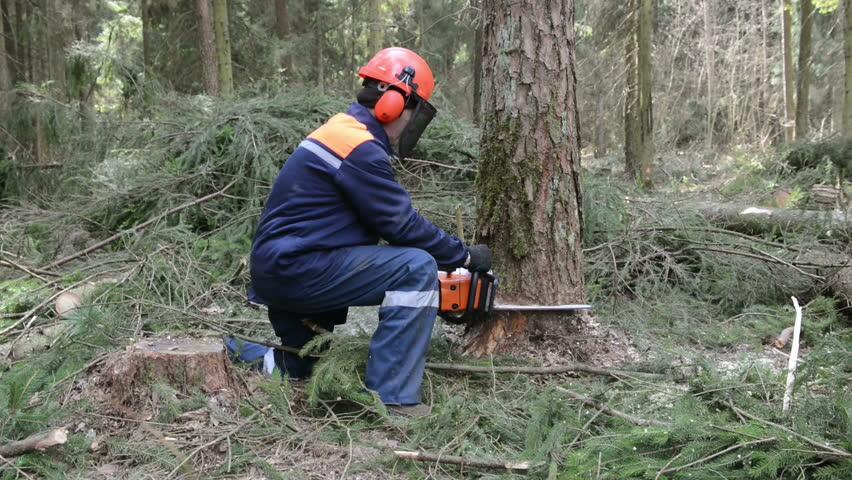 nenets woman cutting firewood - photo #35