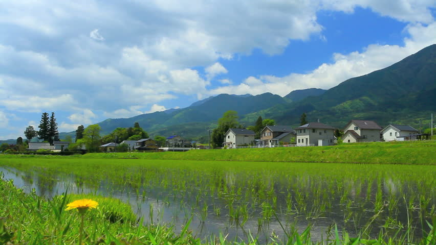 Paddy field in Nagano Prefecture, Japan. Time Lapse.