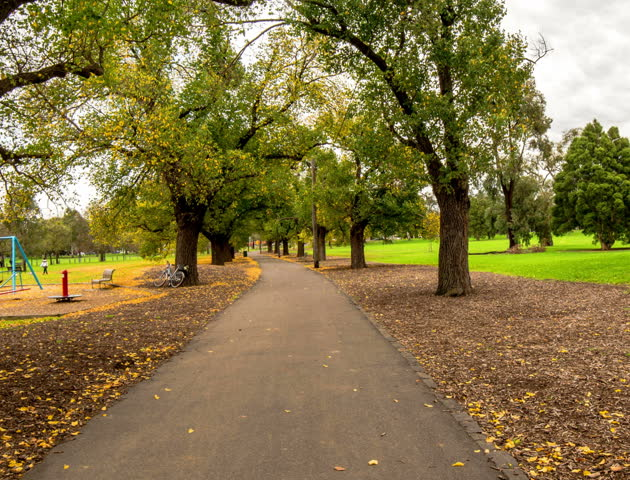 MELBOURNE- MAY 26: lots of autumn fall, walking in the park Melbourne, AUSTRALIA May 2012 (Hyper Lapse)
