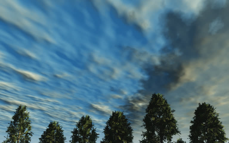 Moving from daytime to sunset. Clouds and sun move across the sky as the sun sets. lens flair, Conifer Trees. Original animation