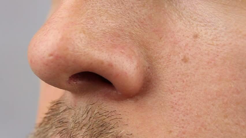 Nose Closeup 20