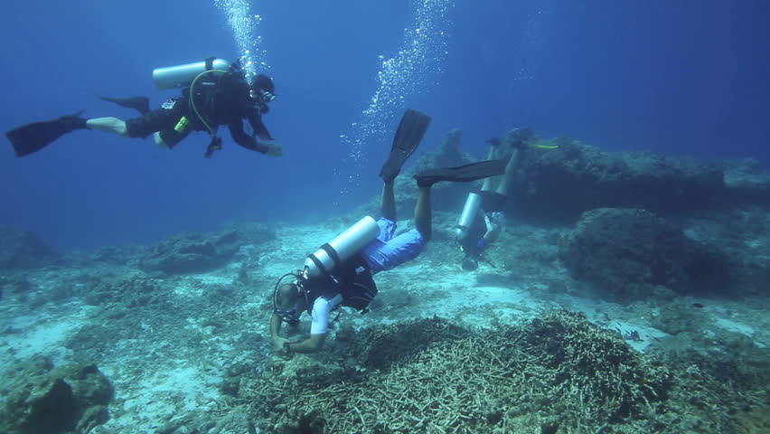 APO ISLAND, PHILIPPINES - MAY 12: Scuba divers completing safety stop on shallow coral reef to end dive on May 12, 2014 in Apo Island, Philippines