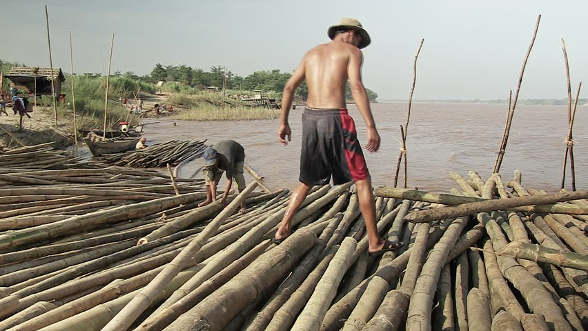 Southeast asia, Cambodia , Koh pene, november 2013. A worker selected by diameter a bamboo cane and throwing it in the mekong in order to be  ordered on the river bank (5)