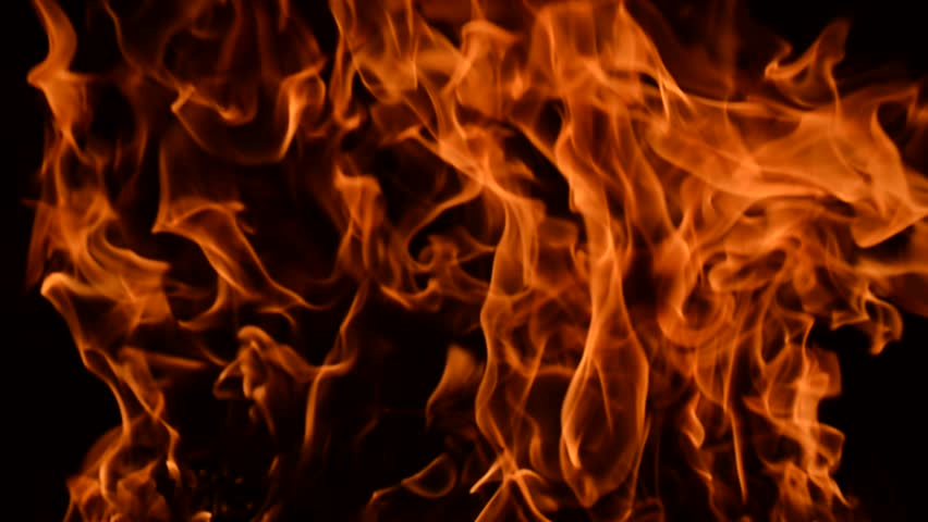 Real Fire On Black Background Stock Footage Video 7325821 ...