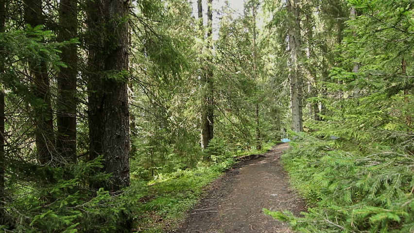 pine mountain lesbian personals Just across the border from pine mountain resort is british columbia (bc) it is perhaps best known for its wilderness and ruralist nature that is becoming increasingly rare in developed.