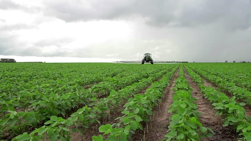BRAZIL, Soybean field, spraying application, farm, farming, food, nutriment