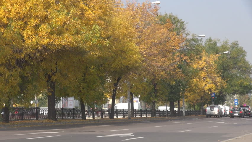 BUCHAREST, ROMANIA - OCTOBER 20, 2014 PAN shot cityscape, spectacular street with trees in fall season, yellowish leafs