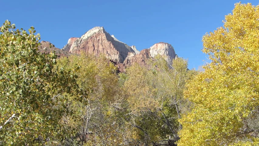Panning Shot of Fall colors in the trees and mountain peaks in the background at Zion National Park, Utah, USA, with natural sound.