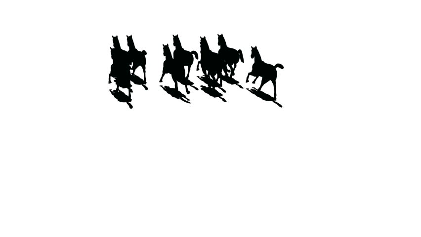 Herd of horses silhouette the top view from helicopter , black on white render .  - HD stock video clip