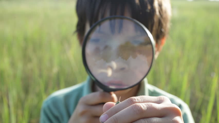 The boy with a magnifier - HD stock video clip
