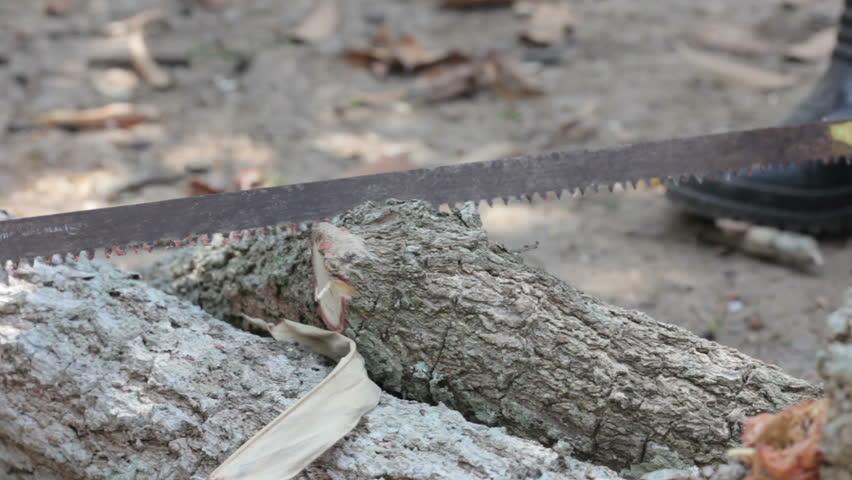 nenets woman cutting firewood - photo #44