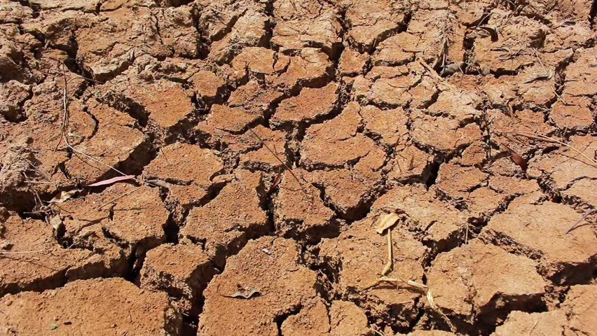 The Dry Cracked Earth In The Dried Up Stream Bed Of The ...
