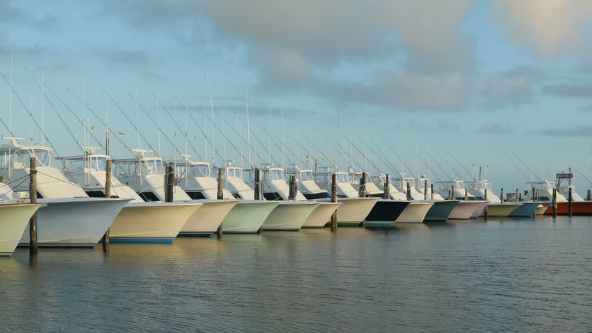 A fleet of charter fishing boats is docked under a late for Oregon inlet fishing